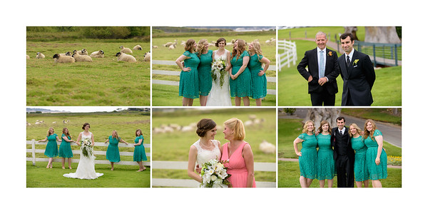 Mission_Ranch_Wedding_Photography_-_Carmel_-_Monica_and_Kevin_16