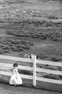 2413_d800b_Sarah_and_Brian_Mission_Ranch_Carmel_Wedding_Photography