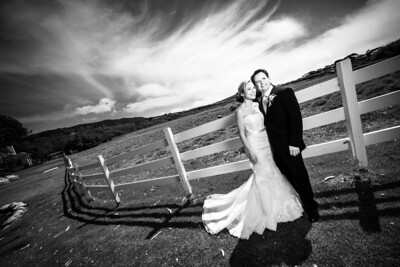 6185_d800a_Sarah_and_Brian_Mission_Ranch_Carmel_Wedding_Photography
