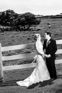 1721_d800b_Sarah_and_Brian_Mission_Ranch_Carmel_Wedding_Photography