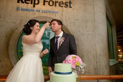 9825_d800b_Jamie_and_Jake_Monterey_Bay_Aquarium_Wedding_Photography