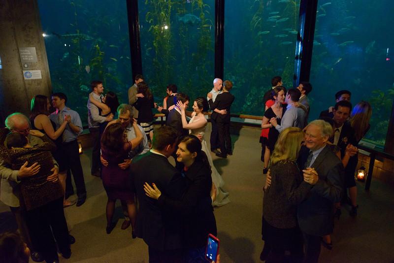 9887_d800b_Jamie_and_Jake_Monterey_Bay_Aquarium_Wedding_Photography