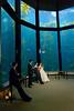 9839_d800b_Jamie_and_Jake_Monterey_Bay_Aquarium_Wedding_Photography