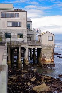 6122_d810a_Jamie_and_Jake_Monterey_Bay_Aquarium_Wedding_Photography