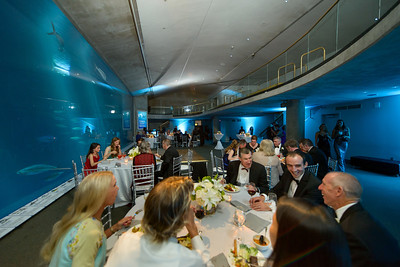 2493_d800_Kirsten_and_Bob_Monterey_Bay_Aquarium_Wedding_Photography