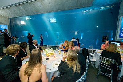 2503_d800_Kirsten_and_Bob_Monterey_Bay_Aquarium_Wedding_Photography
