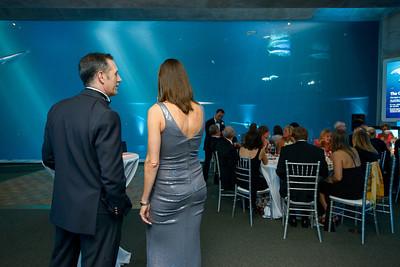 2541_d800_Kirsten_and_Bob_Monterey_Bay_Aquarium_Wedding_Photography