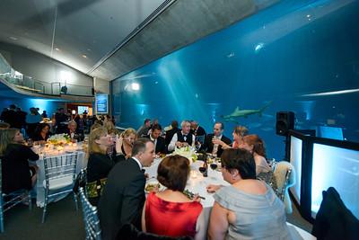 2513_d800_Kirsten_and_Bob_Monterey_Bay_Aquarium_Wedding_Photography