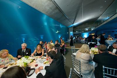 2496_d800_Kirsten_and_Bob_Monterey_Bay_Aquarium_Wedding_Photography