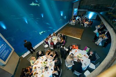 2545_d800_Kirsten_and_Bob_Monterey_Bay_Aquarium_Wedding_Photography