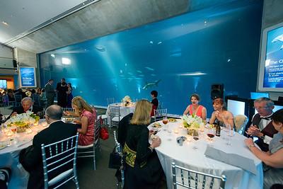 2500_d800_Kirsten_and_Bob_Monterey_Bay_Aquarium_Wedding_Photography