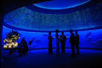 6966_d3_Kirsten_and_Bob_Monterey_Bay_Aquarium_Wedding_Photography