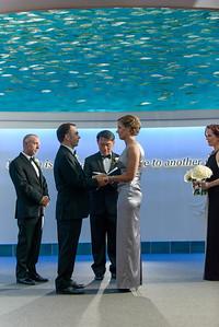 2397_d800_Kirsten_and_Bob_Monterey_Bay_Aquarium_Wedding_Photography