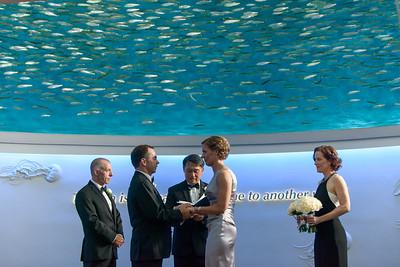 2395_d800_Kirsten_and_Bob_Monterey_Bay_Aquarium_Wedding_Photography