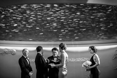 2399_d800_Kirsten_and_Bob_Monterey_Bay_Aquarium_Wedding_Photography