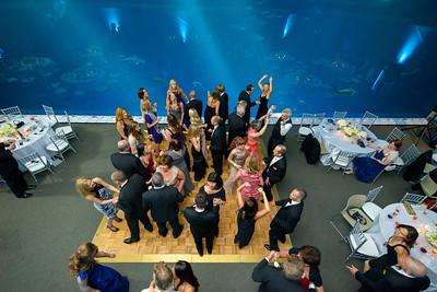 2680_d800_Kirsten_and_Bob_Monterey_Bay_Aquarium_Wedding_Photography