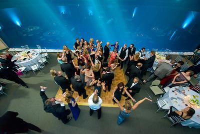 2674_d800_Kirsten_and_Bob_Monterey_Bay_Aquarium_Wedding_Photography