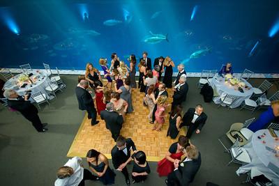 2683_d800_Kirsten_and_Bob_Monterey_Bay_Aquarium_Wedding_Photography