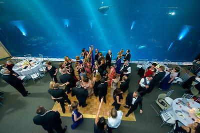 2677_d800_Kirsten_and_Bob_Monterey_Bay_Aquarium_Wedding_Photography