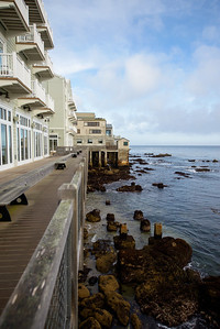 1610_d800_Kirsten_and_Bob_Monterey_Bay_Aquarium_Wedding_Photography