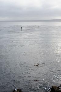 6783_d3_Kirsten_and_Bob_Monterey_Bay_Aquarium_Wedding_Photography