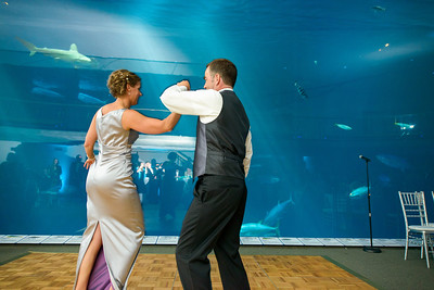 2646_d800_Kirsten_and_Bob_Monterey_Bay_Aquarium_Wedding_Photography