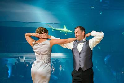 2648_d800_Kirsten_and_Bob_Monterey_Bay_Aquarium_Wedding_Photography