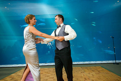 2645_d800_Kirsten_and_Bob_Monterey_Bay_Aquarium_Wedding_Photography