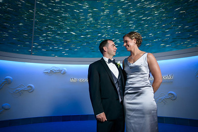 2115_d800_Kirsten_and_Bob_Monterey_Bay_Aquarium_Wedding_Photography