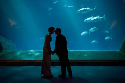 2048_d800_Kirsten_and_Bob_Monterey_Bay_Aquarium_Wedding_Photography