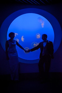 2124_d800_Kirsten_and_Bob_Monterey_Bay_Aquarium_Wedding_Photography