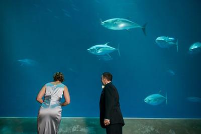 2067_d800_Kirsten_and_Bob_Monterey_Bay_Aquarium_Wedding_Photography