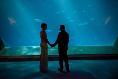 2046_d800_Kirsten_and_Bob_Monterey_Bay_Aquarium_Wedding_Photography