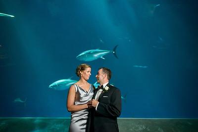 2064_d800_Kirsten_and_Bob_Monterey_Bay_Aquarium_Wedding_Photography