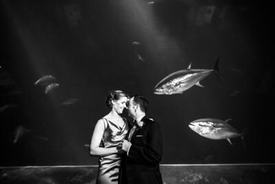 2065_d800_Kirsten_and_Bob_Monterey_Bay_Aquarium_Wedding_Photography