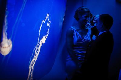 6956_d3_Kirsten_and_Bob_Monterey_Bay_Aquarium_Wedding_Photography