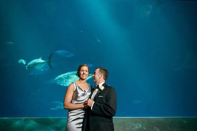 2066_d800_Kirsten_and_Bob_Monterey_Bay_Aquarium_Wedding_Photography