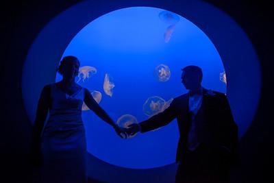 2125_d800_Kirsten_and_Bob_Monterey_Bay_Aquarium_Wedding_Photography