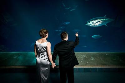 2053_d800_Kirsten_and_Bob_Monterey_Bay_Aquarium_Wedding_Photography
