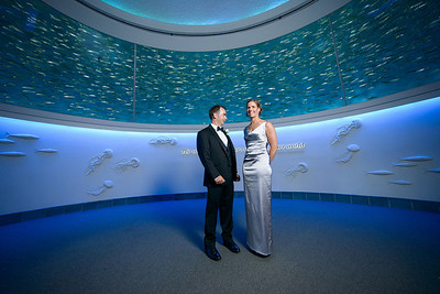 2109_d800_Kirsten_and_Bob_Monterey_Bay_Aquarium_Wedding_Photography