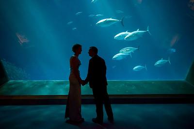 2049_d800_Kirsten_and_Bob_Monterey_Bay_Aquarium_Wedding_Photography