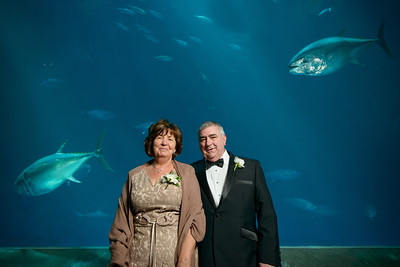 2068_d800_Kirsten_and_Bob_Monterey_Bay_Aquarium_Wedding_Photography