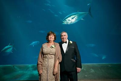 2069_d800_Kirsten_and_Bob_Monterey_Bay_Aquarium_Wedding_Photography