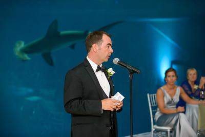 2595_d800_Kirsten_and_Bob_Monterey_Bay_Aquarium_Wedding_Photography
