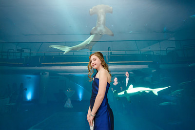 2509_d800_Kirsten_and_Bob_Monterey_Bay_Aquarium_Wedding_Photography