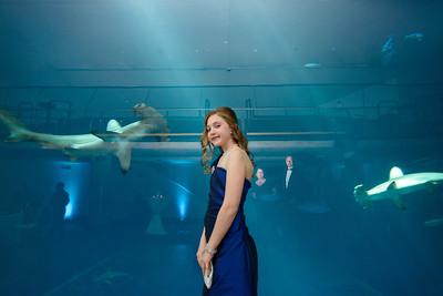 2508_d800_Kirsten_and_Bob_Monterey_Bay_Aquarium_Wedding_Photography