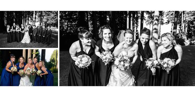 Mountain_Terrace_Wedding_Photos_-_Redwood_City_-_Alexandra_and_Matt_12
