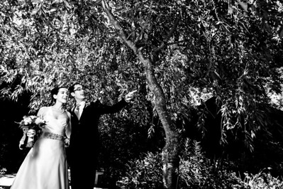 7240-d700_Alyssa_and_Paul_The_Outdoor_Art_Club_Mill_Valley_Wedding_Photography
