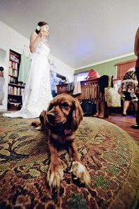 9016-d700_Katie_and_Wes_Felton_Wedding_Photography