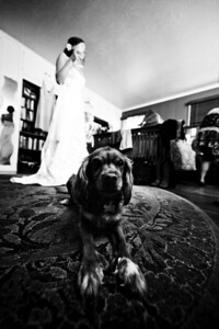 9017-d700_Katie_and_Wes_Felton_Wedding_Photography